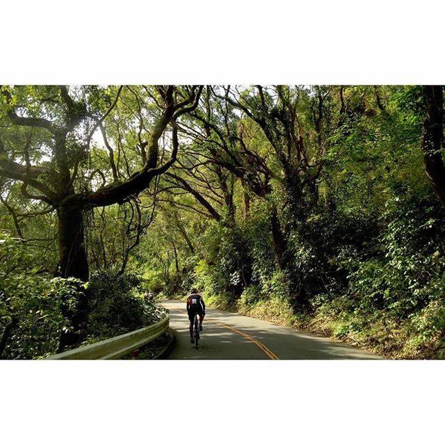 "takemoto on Instagram: ""金峰山登り②。#ヒルクラ#roadbike #金峰山"" (775343)"