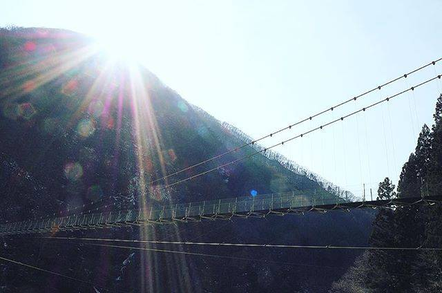 "@xa190 on Instagram: ""秩父湖橋という吊橋🌉 歩いてみたけど、結構怖かったです😣  #埼玉 #秩父 #秩父湖 #秩父湖吊橋 #きらきら #太陽 #吊橋 #吊り橋  #earth_shotz  #japan_visit  #lovers_nippon  #jp_gallery #photo_jpn…"" (775508)"