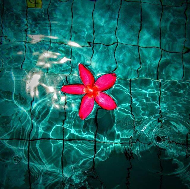 "Gaku on Instagram: ""#アナンタラバンコクリバーサイドリゾート #anantarabangkokriverside #バンコク#bangkok #タイ #タイ旅行 #thailand #旅行 #travel #プール #pool #水 #water #カメラ #camera #カメラ男子#カメラマン…"" (775640)"