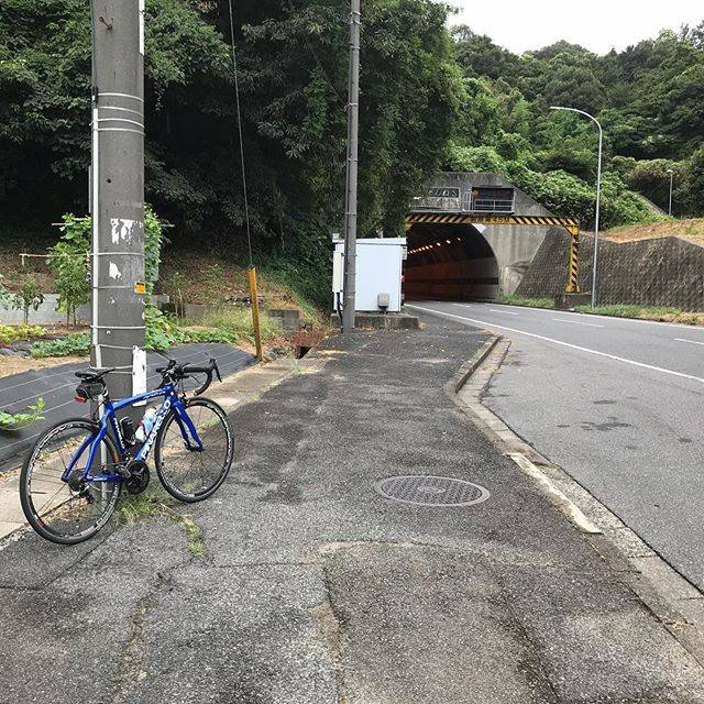 "@ishi1970 on Instagram: ""早朝ライド♪今日は未知の道を開拓。水島方面、似た道が多くて難しい。帰りは、お化けが出ると噂の古城池トンネルを通って倉敷に。#早朝ライド#サイクリング#ロードバイク#ピナレロ#水島#倉敷#古城池トンネル#岡山"" (776400)"