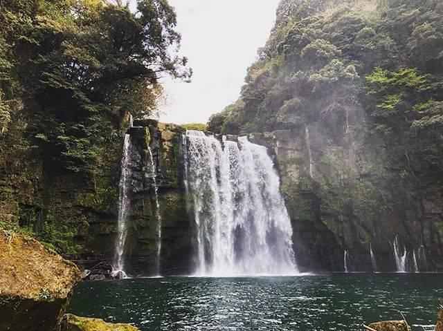 """Tomo on Instagram: """"鹿児島県の神川大滝  滝のサイズも大きくて なんだか飲み込まれてしまいそうな 雰囲気でした。  水量も多く水しぶきが 降り注ぎ涼しい場所でした。 夏場には最適だと思います🌞  滝上には吊り橋も掛かっており 上から滝を眺めることも可能🔍  #鹿児島県 #神川大滝  #神川大滝公園…"""" (776519)"""