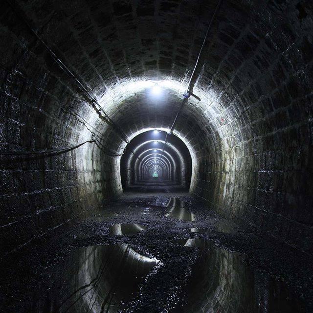 """豊田市【公式】 on Instagram: """"・ ----------------------------------------- 【今日の1枚】旧伊勢神トンネル 「masatany19」さんの写真 素敵な投稿ありがとうございます! -----------------------------------------…"""" (777153)"""