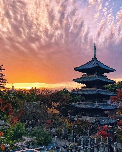"""Tk_73 on Instagram: """"愛知県民ながらこんな素敵な風景が撮れるとは。 愛知県の素敵な所も発掘していきたいなと改めて感じました。紅葉はまだ見に行けてませんが身近な所で秋を感じる事ができました。 写真を撮る様になって景色を楽しむ事ができる様になりました。 また一つステキなオトナになりました♪…"""" (777161)"""