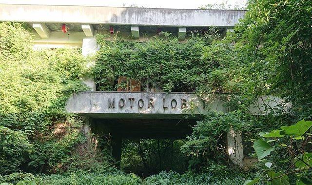 "MOMO on Instagram: ""夏のモテル北陸 #廃墟 #ruins #モテル北陸 #廃ラブホ ホテル廃墟"" (778588)"