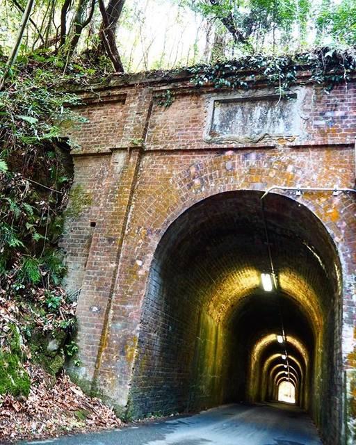 """@itumo_smile109 on Instagram: """"相坂トンネル 大正時代のトンネル 乗用車1台なんとか通るくらいの狭いトンネル  ちょっとラピュタっぽい?と思いました。だから周りの木の茂ってるとこも入れたかった。  #関西カメラ女子部 #ひろがり同盟 #bestjapanpics #retrip_nippon…"""" (778844)"""