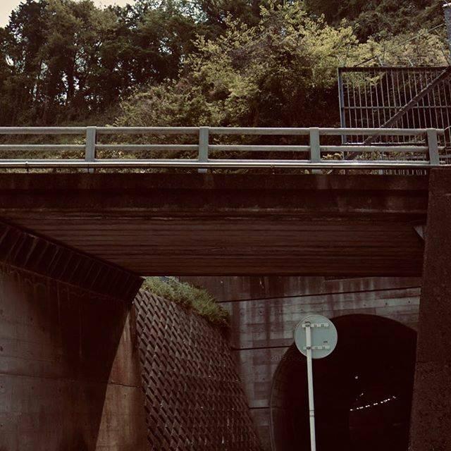 """南国宮 啓徳 on Instagram: """"ホラー(1) 小坪付近のトンネル通過  #ホラー#小坪#小坪トンネル#女性 #逗子#鎌倉#横浜横須賀道路#横須賀線 #逗子隧道#新小坪隧道#小坪隧道 #心理学#脳機能#脳科学#錯覚#幻視#幻覚#幽霊…"""" (780495)"""