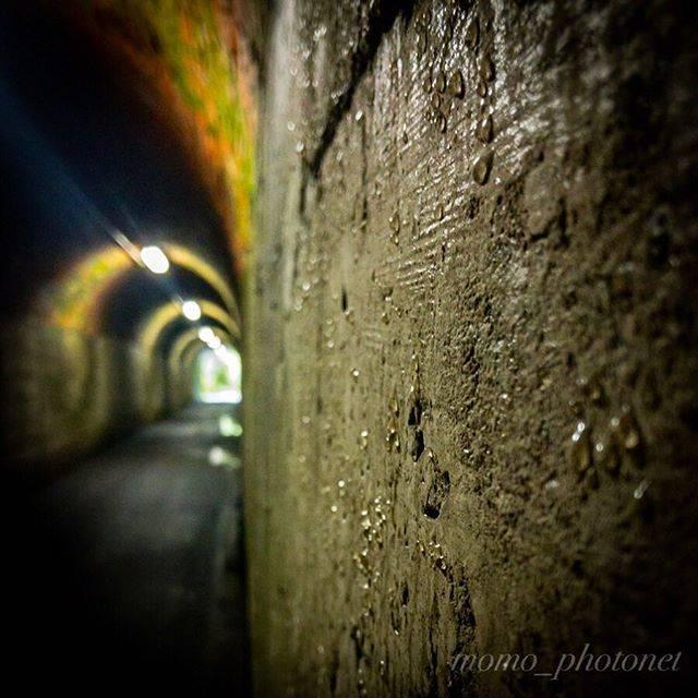 """桃@ヒト科のオッサン on Instagram: """"「相坂隧道 〜水の音〜」 トンネル内部は水滴がたくさん付いてます ポトーーーン…ピチョーーーン…と響きます . あ…返信で軽く触れてきましたがこの相坂トンネルって姫路市屈指の心霊スポットらしく、確かに夜はヤバそうですꉂꉂ(ᵔᗜᵔ*)アハハ .…"""" (780606)"""