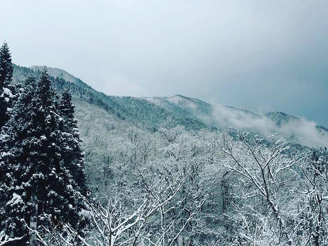 "Otsuka Kenichiro on Instagram: ""雪〜(((o(*▽*)o)))#鳥取県#人形峠#白銀の世界#靴に雪入った#カメラ忘れた#四季折々#やっぱり鳥取でしょ"" (780927)"