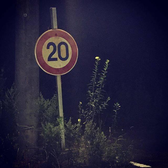 """山家 勇太 on Instagram: """"心霊スポット行ってまいりました。怖いから待ってたけど…#太白山トンネル#八木山橋"""" (782899)"""