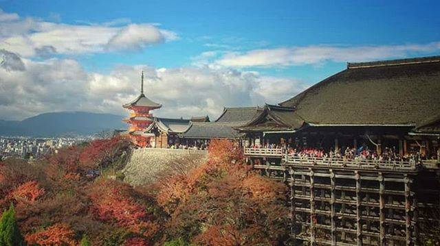 "jojo lau on Instagram: ""One of my favorite place #Kiyomizu_temple#japan#FSeightpic #ForumSession #ForumTraveller#清水寺, #Kyoto  #Japan"" (789643)"