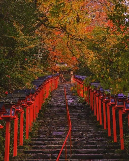 "Photographer in Kyoto on Instagram: ""location:Kibune Shrine(Kyoto Pref)  貴船神社 紅葉参道 ---------------------------------------------- #京都 #貴船神社 #kibuneshrine #紅葉 #KyotoJapan…"" (790221)"