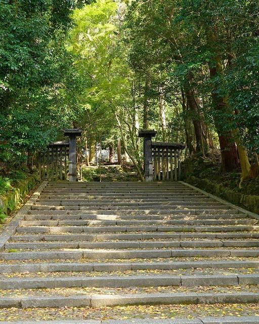 "Domestic_travel中浜555 on Instagram: ""法然院総門  奇しくも秋の伽藍内特別公開の時期とあって、人の往来が多く普段以上に撮影時間を費消する有り様😏  #京都 #京都旅行 #法然院  #法然院総門 #α7iii  #kyoto  #ig_japan  #honenin  #honenin_somon…"" (790225)"