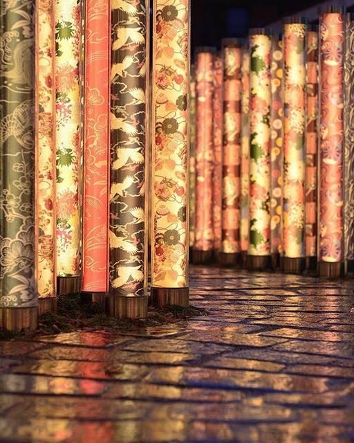 """こころから on Instagram: """"📍キモノフォレスト / 京都⠀ ⠀ 京友禅の生地を使ったポール約600本が、嵐山駅や線路脇を鮮やかに彩ります。⠀ ⠀ 幻想的な夜のライトアップは必見です👀⠀ ⠀ 💡基本情報 右京区嵯峨天龍寺造路町35-28 ライトアップ 日没~21:00 (一部エリアは日没~23:00)⠀ ⠀…"""" (790226)"""
