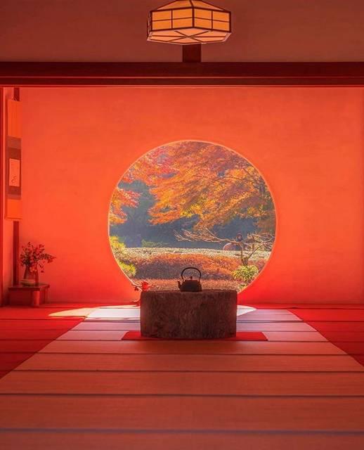 """【公式】オトナ旅。一度は訪れてみたい日本の名所 on Instagram: """"≪鎌倉 明月院🍁≫  神奈川県 鎌倉 明月院の写真です📸 窓の向こうに見える庭が暖かい雰囲気で素敵ですね☺️  この写真は、 @washima12  さんにご提供頂きました! ありがとうござます! …"""" (790492)"""