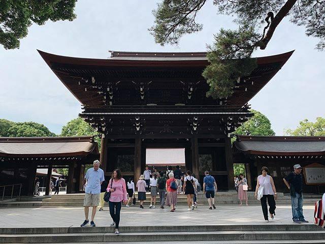 "Hiro Kobayashi on Instagram: ""春先の明治神宮#japan #tokyo #snapshot  #streetphotography #日本 #東京 #渋谷 #明治神宮 #原宿 #2019 #iphonexsmax #vsco #vscocam"" (790866)"
