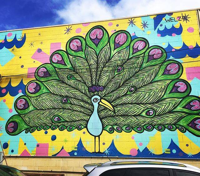 "Lou on Instagram: ""#peacock #stanley @radiokath#mural #powow #kakaako #oahu #honolulu #hawaii #streetart #art #graffiti #graffitiart #color #paint #painting…"" (791202)"