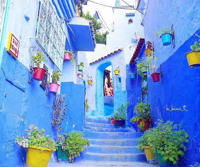 """❀︎ kyoko ❀︎ on Instagram: """"  しばらくinstagram をお休みして ポルトガル🇵🇹&モロッコ🇲🇦を旅してきました  少しずつ旅の写真をupしていきます   まずはモロッコ北部の青い街「シャウエン」 正式名称「シェフシャウエン(Chefchaouen)」 …"""" (791327)"""