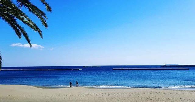 """Haga Takumi on Instagram: """"社員旅行。家につくまでが社員旅行❗帰りのこだま(名古屋乗換ってシンドイ)ナウ写真がワイハっぽいけど、熱海でした。新卒達の若造に混じって班行動してたけど、楽しかった✨#熱海 #風きつかった #トレジャーハンターでいっぱい歩いて足痛い #絵はがきにありそうな写真"""" (791614)"""