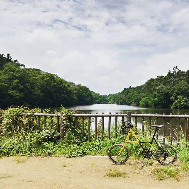 "Shunsuke  H on Instagram: ""じりじり照りつける太陽。夏はこうでないと!でも暑いw#ポタリング#自転車のある風景 #折り畳み自転車#ドッペルギャンガー #与兵衛沼"" (792357)"