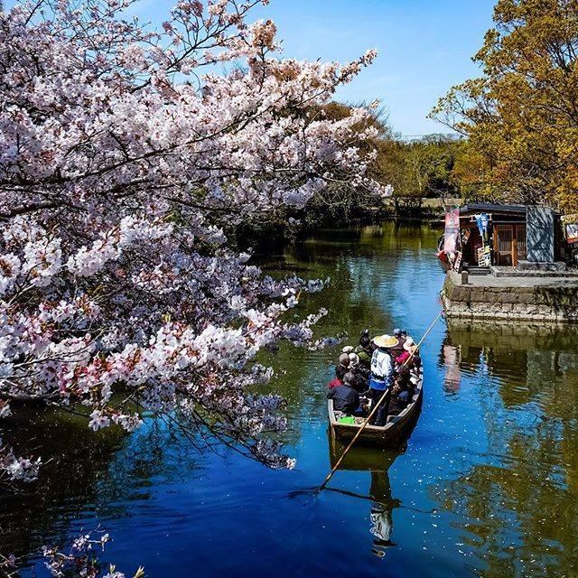 "Makoto on Instagram: ""福岡 柳川 お堀めぐり(川下り) (Going Around The Waterway Of The Moats in A boat Yanagawa Fukuoka,Japan) ・ #fukuoka #japan #福岡 #風景 #scenery #日本…"" (793351)"