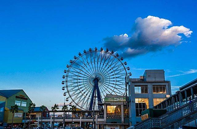 """메종손드물 on Instagram: """"마리노아 시티 후쿠오카マリノアシティ福岡의 전체적인 구조는 요트장 방향으로 모여 있는 마리나사이드 동(洞)과 서쪽 방향에서 마주보고 있는 아울렛 동으로 이루어져 있다. 마리나사이트에는 대관람차가 있고 바다를 보면서 쉴 수 있는 목재 데크가 깔려 있는…"""" (793364)"""