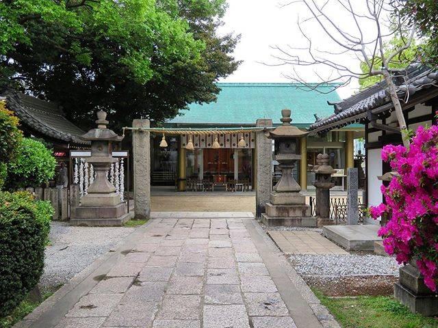 "@tetsutabist on Instagram: ""2019年4月29日(月)〜5月5日(日)、おおさか東線の新規開業の新大阪〜放出(はなてん)、京都、奈良、三島(静岡県)の6泊7日の旅に出かけてきた。 その旅日記。 4月30日(火)。 大阪。鴫野。…"" (793470)"