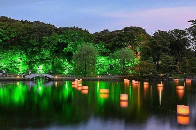 "@mitsu_kkk777 on Instagram: "". 徳川園 . 龍仙湖に浮かぶ灯篭、とても幻想的でした . . #愛知県  #名古屋市  #徳川園  #日本庭園  #灯篭  #日本の景色  #日本の風景  #夏の風物詩  #ファインダー越しの私の世界  #ar_of_japan_…"" (794236)"