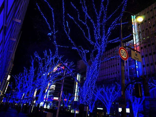 "China︎☺︎ on Instagram: ""#名古屋 #栄 #イルミネーション #青 #綺麗"" (794403)"