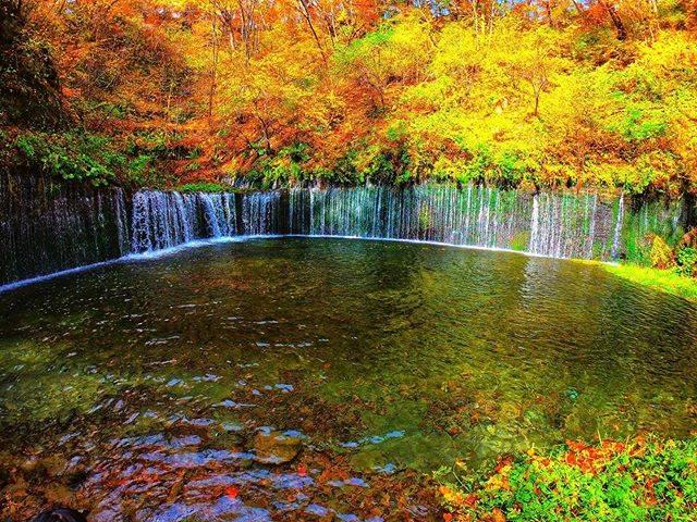 "@t.06.01 on Instagram: ""🍁白糸の滝🍁 #軽井沢 #白糸の滝 #紅葉 #滝 #旅 #日本の絶景 #日本の風景 #景色 #自然 #けしからん風景 #国内旅行 #カメラ好きな人と繋がりたい #山が好き #自然好き #ダレカニミセタイケシキ #誰かに見せたい景色 #誰かに見せたい風景 #東京カメラ部…"" (794516)"