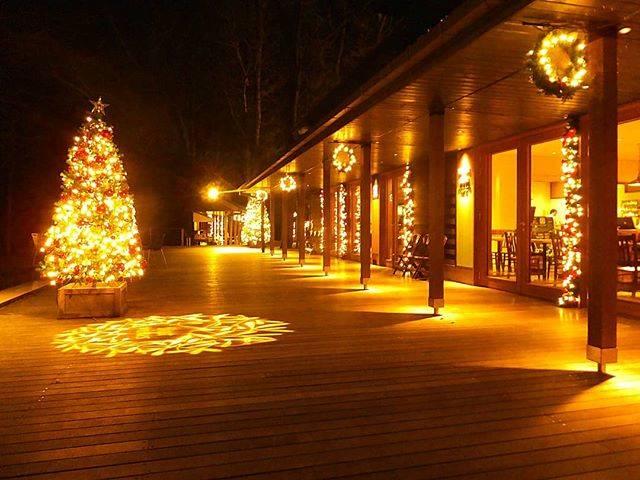"""草津温泉 花栞(はなしおり) on Instagram: """"軽井沢ハルニレテラスのクリスマスツリー  昨日撮りました。  遅い時間だったので人もいなくて、静かな時間が流れていました。  今日も忙しかった。  仕込みも重なって、全く休めず、この時間までスマホも触れなかった。  新しい客室の天井の壁紙を貼らなくちゃならないし。やばい。…"""" (794527)"""