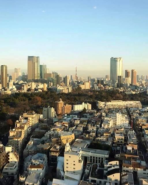 """十河 翔 そごう しょう SOGO SHO on Instagram: """"新しくなったエイベックスビルから見た南青山の景色🏙 高さ制限のあるエリアで界隈に遮る建物は何ひとつなく、 東京タワーの遥か先の地平線まで、綺麗に見渡せました。 #avex #エイベックス #新社屋 #社食 #コワーキングスペース #南青山 #表参道 #青山 #外苑前 #青山通り…"""" (794808)"""