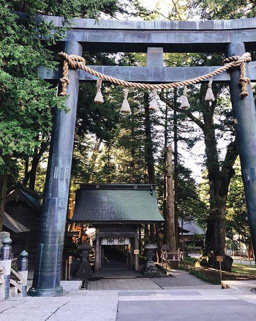 "🏔Go NAGANO【長野県 観光 公式インスタグラム】 on Instagram: ""// Photo by @la_pinecone  Suwa Taisha Kamisha Honmiya—One of Japan's Oldest Shrines (Suwa City)  Suwa Taisha Kamisha Honmiya sits in…"" (795344)"