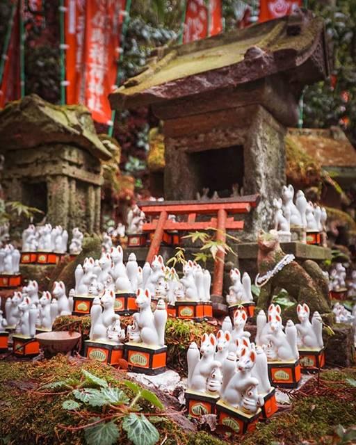 """Emil Truszkowski on Instagram: """"Magiczne liski w świątyni Sasuke Inari w Kamakurze. Przepiękna świątynia ukrywa wśród gór. Prawie nikogo tu nie ma. Jedno z moich…"""" (796741)"""