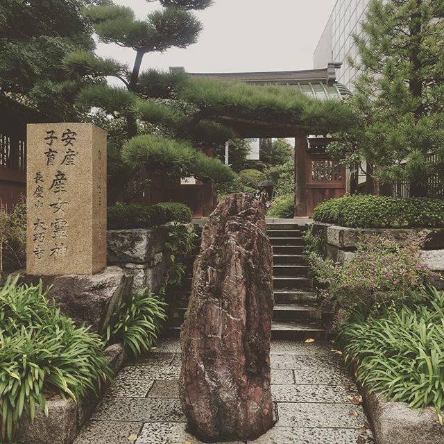 """Yurika⑅Mori on Instagram: """"今日は夫が結婚式で東京に出てきたので戌の日ではなかったのですが、鎌倉のおんめさまに安産祈願に行ってきました👶 . 妙符の中に入っている符の色で性別がわかるという言い伝えがあって。 . 白の兜は男の子、赤の金魚は女の子らしく… . 帰宅し、中を開けてみると… . 兜でした🚹 .…"""" (796768)"""