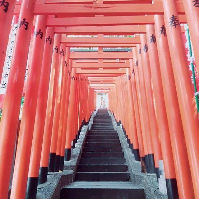 "chan on Instagram: ""インスタのプロフィール画像でもあるこの鳥居は、#日枝神社 です。 初めて見た時は感動したなぁ〜! #御朱印 #御朱印ガール #御朱印巡り #御朱印スタグラム #神社 #神社巡り #⛩️ #東京 #japan #japanesephotography…"" (797923)"