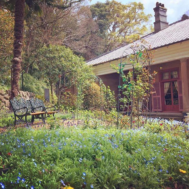 """@aleafadrift on Instagram: """"長崎#nagasaki #glovergardennagasaki #bench #長崎 #グラバー園 #ベンチ"""" (801490)"""