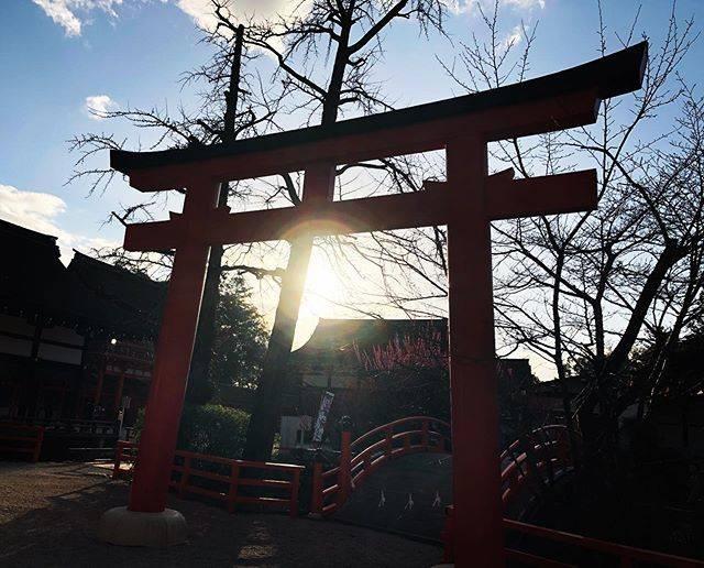 "®️&©️ on Instagram: ""2020.02.23. 天皇誕生日 〠下鴨神社 #kyoto #kyotogram  #plum #shrine #art_of_japan_  #retrip_nippon  #best_photo_japan  #japan_daytime_view…"" (805939)"