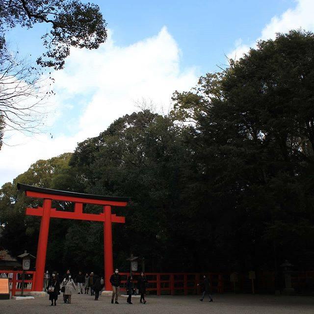 """KODAMA Yutaka on Instagram: """"京都は賀茂御祖神社です。#賀茂御祖神社 #下鴨神社"""" (805944)"""