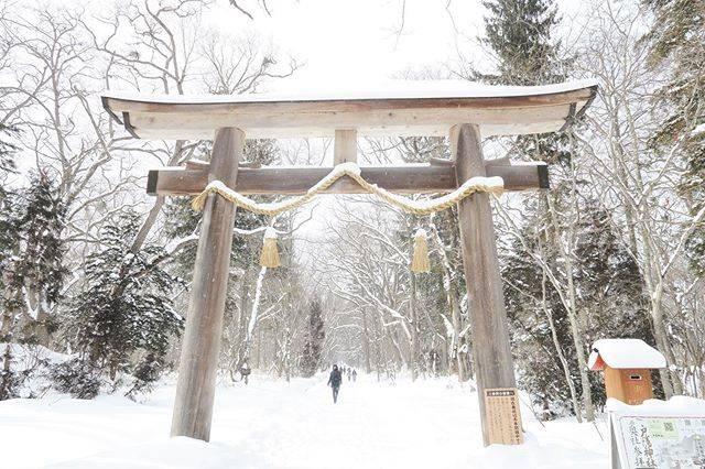 """🐢aka on Instagram: """"📷 スノボ旅行2日目は #戸隠 へ❄️ 目的はもちろん戸隠神社⛩❣️ 奥社までの道のりが長い長い。 雪深い道を片道2キロ歩いてお参りしてきたよん🙏✨ 途中雪がありすぎて四つん這いで進むという感じが楽しかった(笑)(笑)…"""" (807009)"""