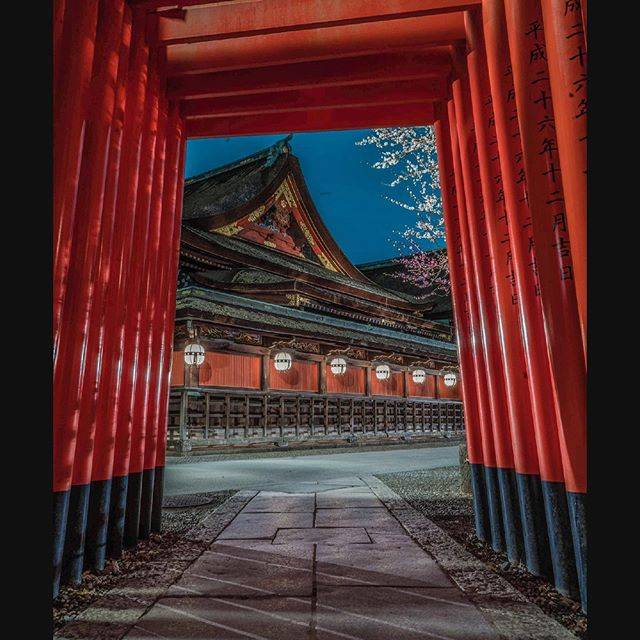 "ariko on Instagram: "". 北野天満宮(天神さん)のライトアップ。 これ、撮りたかったんです☺ . . 撮影場所 :  京都 北野天満宮 撮影日 :  2020.2.25 . . . . #京都 #北野天満宮 #梅 #鳥居 #そうだ京都行こう  #あなたに撮られたい京都…"" (807494)"