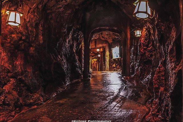 """琴音。 on Instagram: """"。 ─︎─︎─︎─︎─︎─︎─︎─︎─︎─︎─︎─︎─︎─︎─︎─︎─︎ ▪️#三段壁洞窟 ─︎─︎─︎─︎─︎─︎─︎─︎─︎─︎─︎─︎─︎─︎─︎─︎─︎ ・ ・ 雰囲気のある洞窟内 上から 水が落ちて来たりと ・ なんだか 探険してるようで ワクワクしました♪♪ ・ ・…"""" (808221)"""