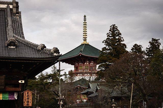 "Candle on Instagram: ""20200125 其實那天天氣還不錯 有點太陽 但被我修到看起來很差 為什麼 (人的問題)  #Japan #Narita #naritasan #naritasanshinshoji #成田 #成田山 #成田山新勝寺 #temple #building #NikonD3500…"" (809209)"