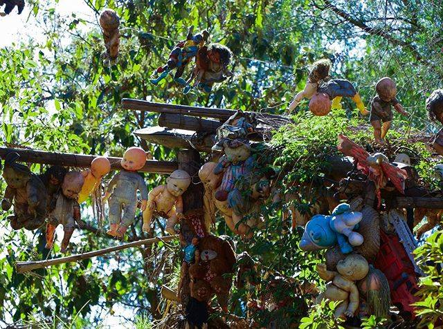 "Takahiro Akashi 明石 昇大 📍🇵🇪 on Instagram: ""📍 Isla de las Muñecas(人形島) / Mexico🇲🇽  世界遺産の街「Xochimilco(ソチミルコ)」から行くことができる、島全体が人形で埋め尽くされた島。人形島。 …"" (810394)"