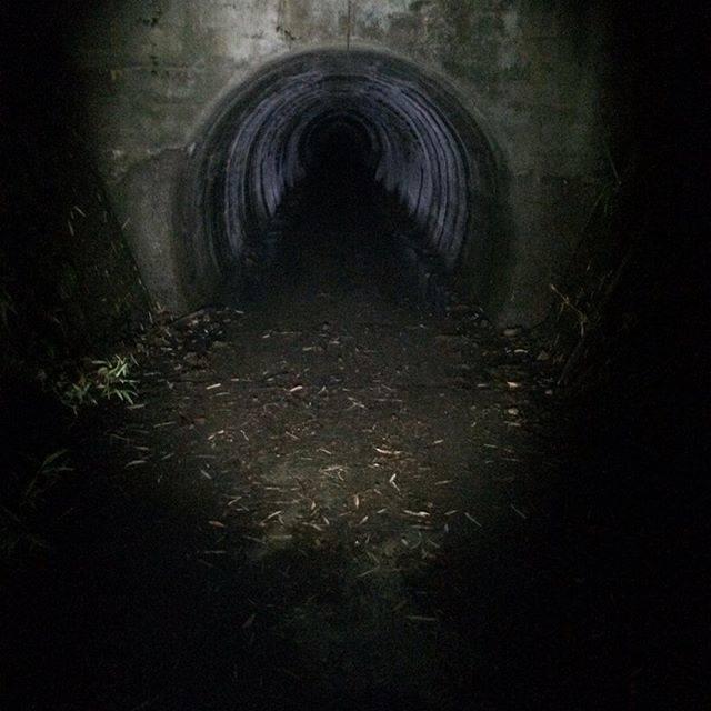 """Ryo Sasaki on Instagram: """"肝試し一人で行ったらたぶんちびってたけど、みんなで行けばそこまででした#葉梨トンネル #肝試し#虫やばすぎ#閲覧注意"""" (812526)"""