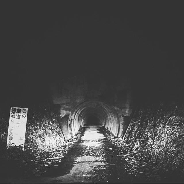 """piro on Instagram: """"ビンッビンに感じちゃうかと思いました。#葉梨トンネル#変な音聞こえるし#ほこらとお札あるし#自殺した女の子の話してたら#がっつり猪出てきたし#くせになりそう"""" (812534)"""