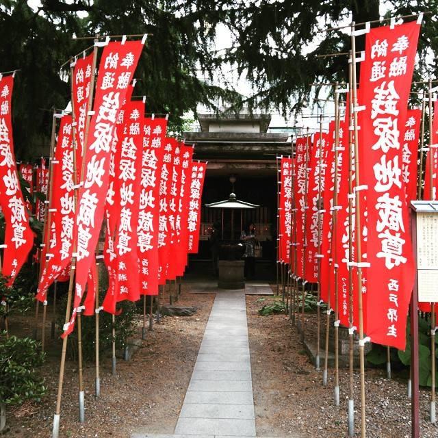 "Keiko Tobi on Instagram: ""#銭塚地蔵尊  #浅草寺  #お金がたまる  #赤い旗"" (812929)"