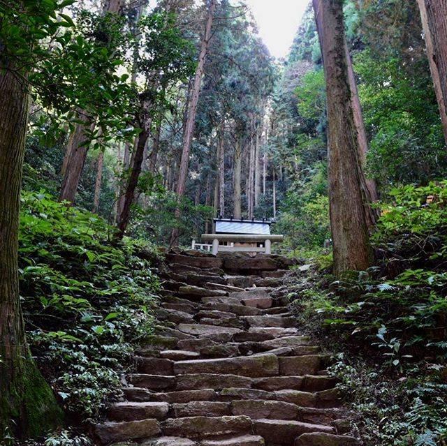 "mayumi on Instagram: ""御岩山その2 . . 御岩山の頂上までもう一頑張りの所に かびれ神宮。 . . 山の入り口の社務所でこちらのかびれ神宮の御朱印もいただけます。 . 御朱印をいただく時に山を登って本当に上までお参りに行ったか聞かれます💦 . , , . #御岩神社 #御岩山 #かびれ神宮…"" (813937)"