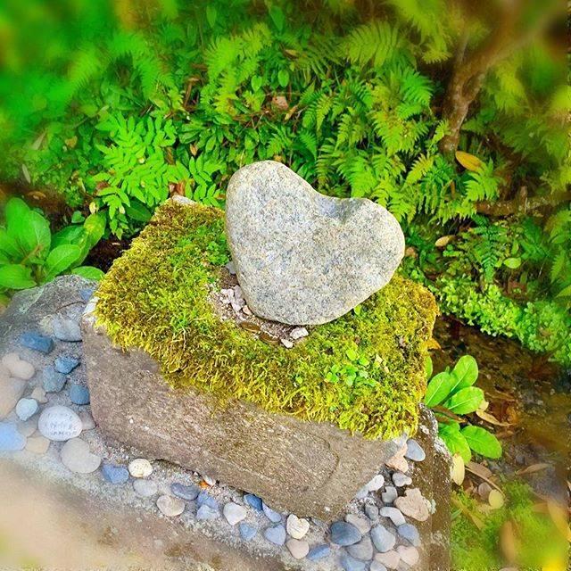 """プリメラ on Instagram: """"茨城県日立市 天女の会のみなさまと #御岩神社 へ ・ 大鳥居の右側に こんなにかわいい ハートの石がありました♡ ・ これを見て しあわせな気分に♪ ( ๑˃̶◡˂̶)◞♡ ・ #ハートの石 #ハート #神社巡り #神社巡り好き #shrine #茨城県日立市…"""" (813939)"""
