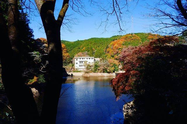 """けい on Instagram: """"秋を惜しむ。  #鎌北湖 #湖 #ため池  #毛呂山 #埼玉 #紅葉  #写真好きな人と繋がりたい  #ファインダー越しの私の世界  #kamakitako #lake #autumn #saitama #japan #japan_of_insta #photography…"""" (814374)"""