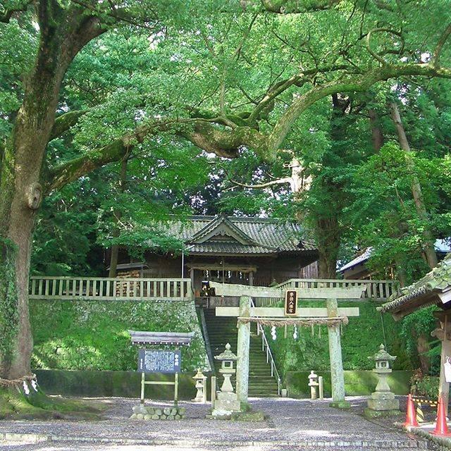 """mi on Instagram: """"事任八幡宮 遠江国一宮#神社  #神社が好き #shrine #事任八幡宮 #遠江国一宮"""" (818318)"""